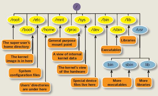 Linux File HierarchyStructure
